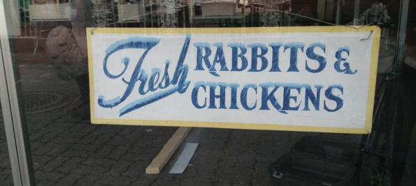 Fresh Rabbits & Chickens