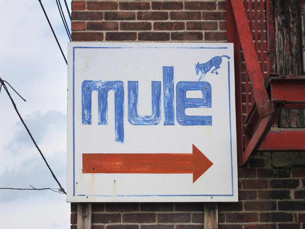 mule_work_web